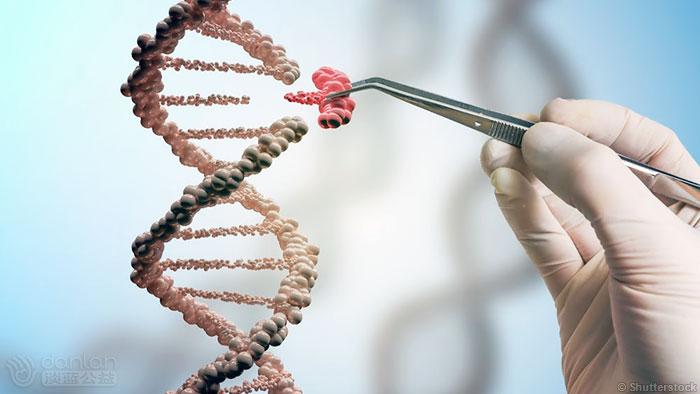 基因编辑技术消灭活物体内的HIV