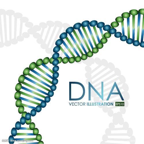 迄今最大规模性取向研究 新发现4种与同性行为相关的基因变异