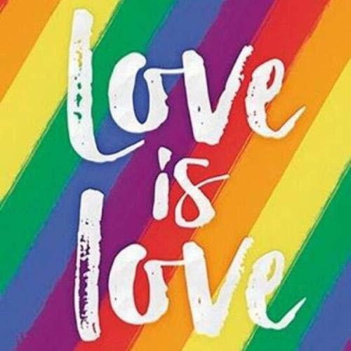 台湾柯文哲避谈同性婚姻丁守中主张另立专法